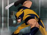 Wolverine Escape
