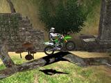 Temple Bike