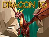 Dragon IO